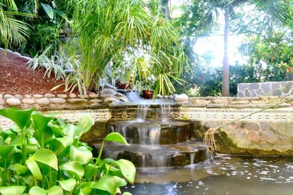 Nourish Your Soul Energy Healing Retreat in Costa Rica