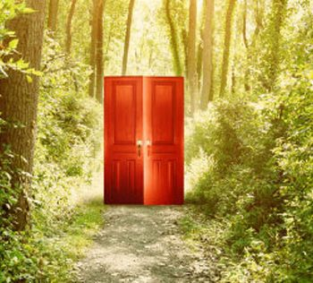 red door in woods